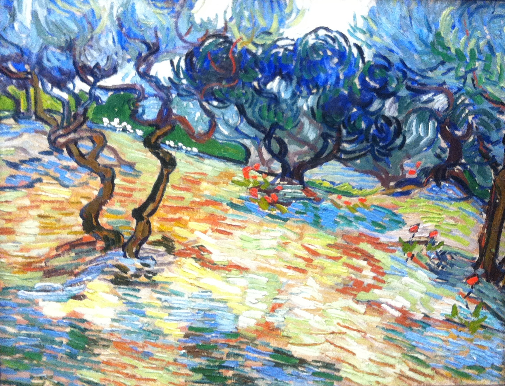vincent van goghs the olive trees Vincent van gogh painted at least 15 paintings of olive trees, mostly in saint-rémy-de-provence in 1889 at his own request, he lived at an asylum there from may 1889 through may 1890 painting the gardens of the asylum and, when he had permission to venture outside its walls, nearby olive trees, cypresses and wheat fields.